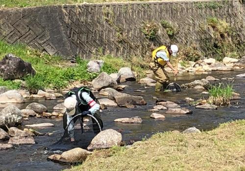 水辺環境調査