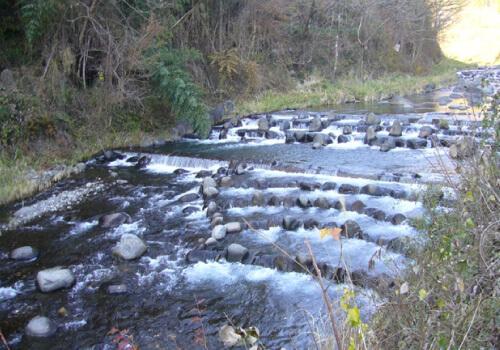 多自然型川づくり
